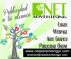Net Advertising 300 250